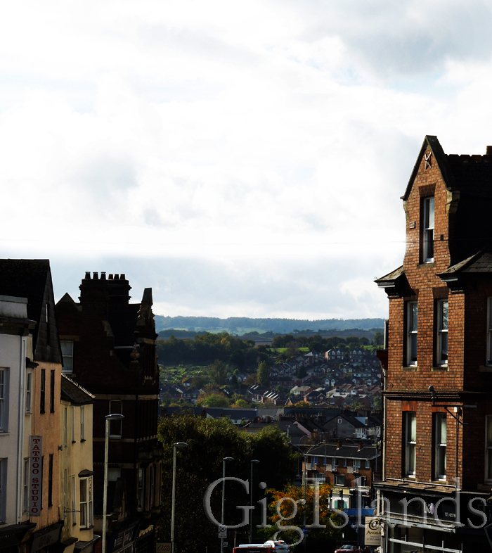 Вид на город с холма (от магазина гитар Мэнсона)