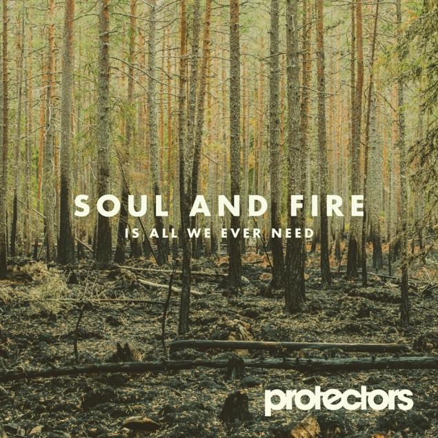 protectors - lp cover